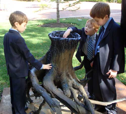 Bronze tree stump sculpture...so realistic!