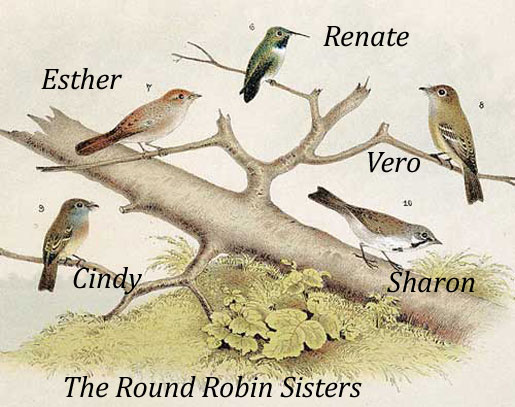 round-robin-sisters