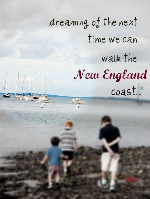 optimized-newengland_newengland-coast