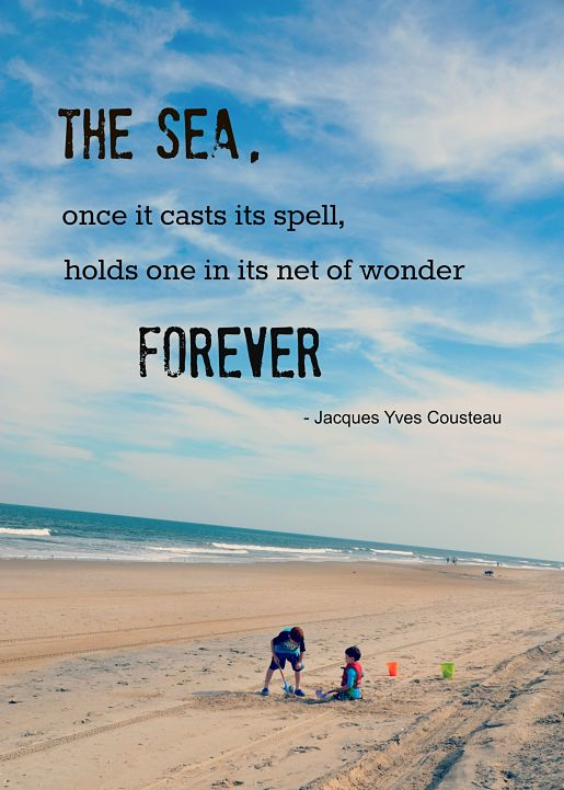 Quote by Jacques Yves Cousteau
