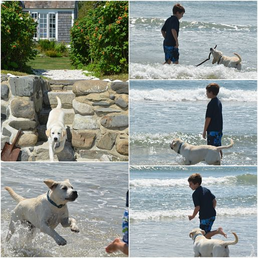 Playing with the puppy on Parsons Beach, Maine