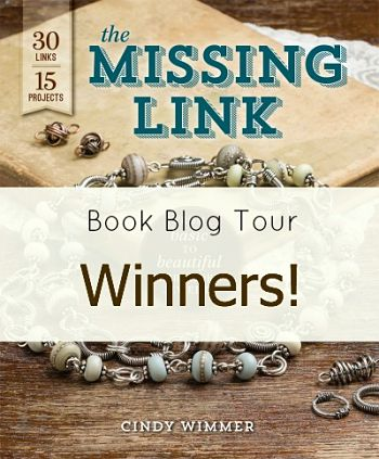 Missing Link blog book tour winners