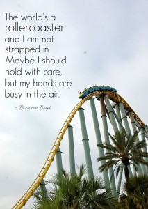 Rollercoaster quotation